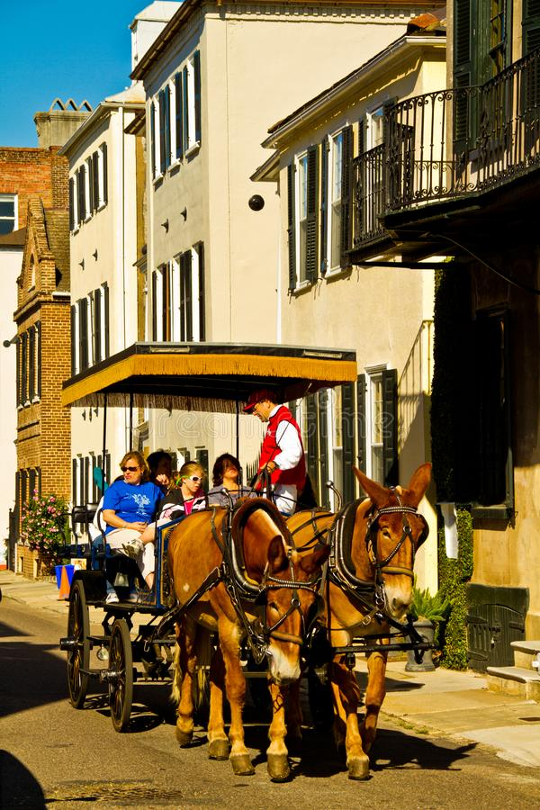 Chariot hippomobile de Charleston photos stock