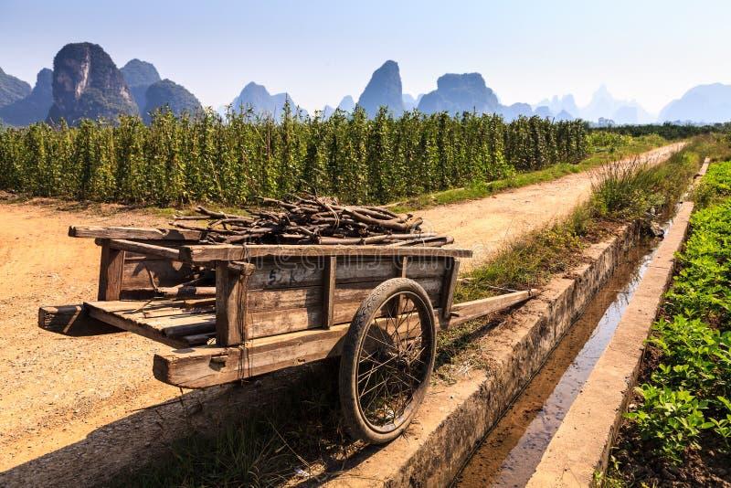 Chariot mit Zweigen in einer Kalksteintallandschaft lizenzfreie stockfotos