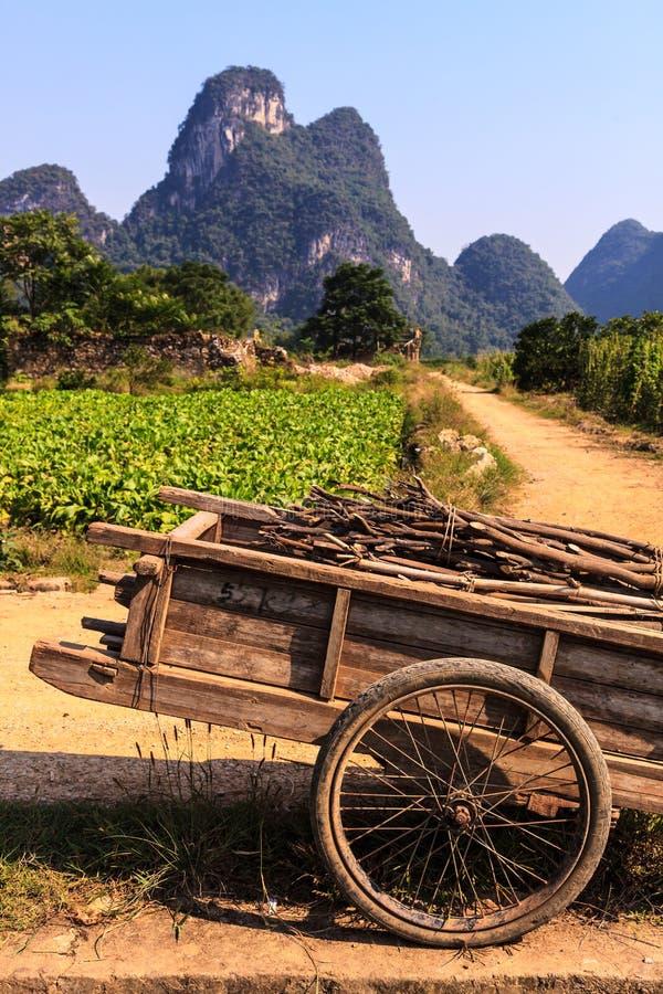 Chariot mit Zweigen in einer Kalksteintallandschaft lizenzfreies stockbild