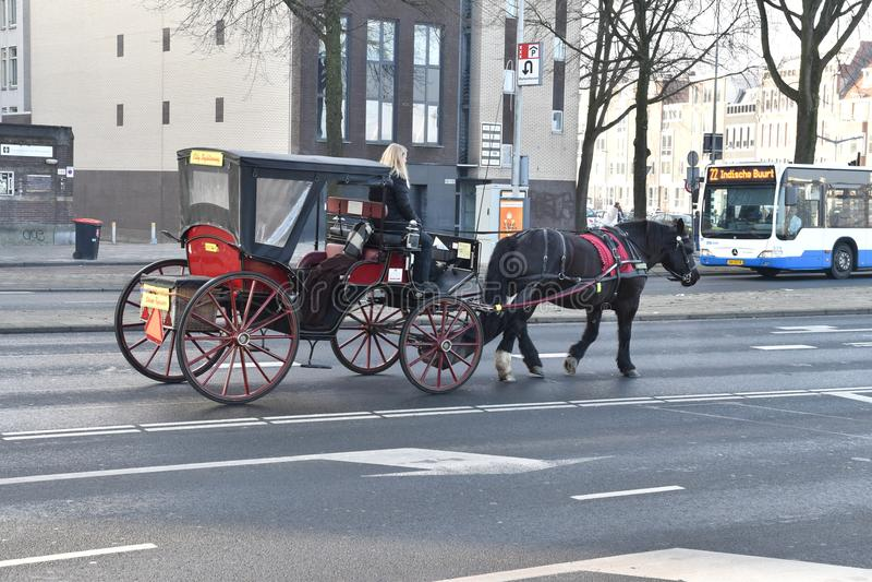 Chariot-tour promenade à Amsterdam images stock