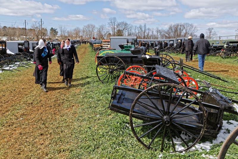 Chariots amish à vendre à la vente aux enchères photo stock