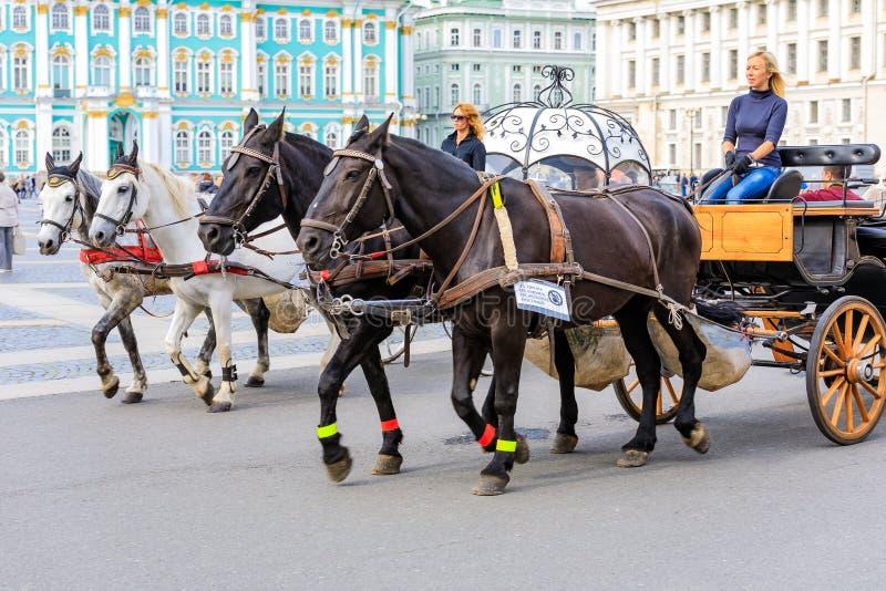 Chariots de cheval attendant le touriste devant le palais d'hiver - ermitage sur la place de palais dans le St Petersbourg, Russi image stock