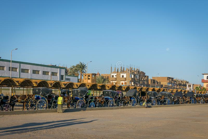 Chariots pour le transport des touristes au temple d'Edfu r photos libres de droits