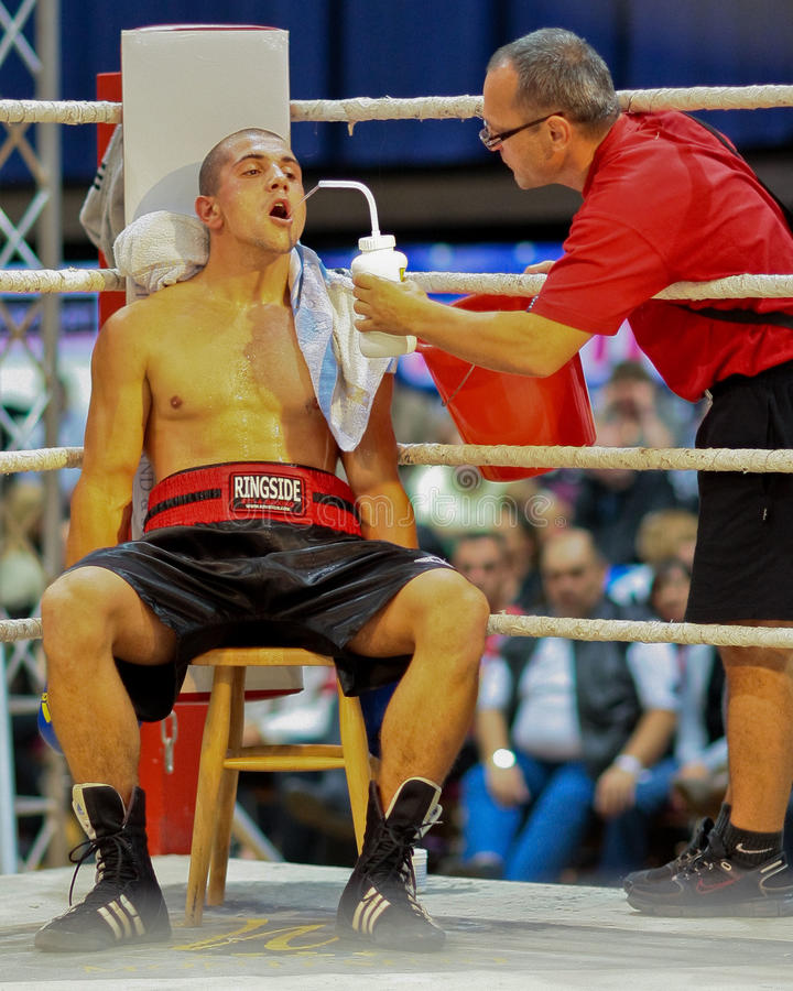 Download Charity Boxing 2009 editorial photography. Image of aggressive - 11482037