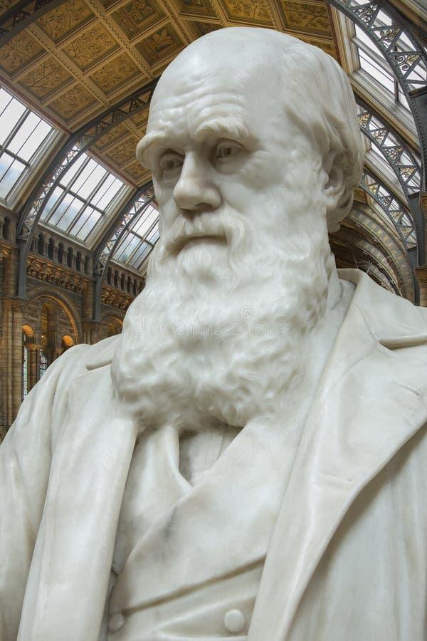 Charles Δαρβίνος - μουσείο φυσικής ιστορίας - Λονδίνο στοκ εικόνα