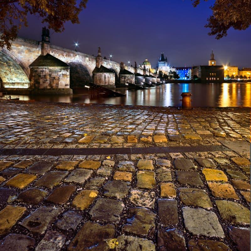 Charles Bridge i Prague royaltyfria foton