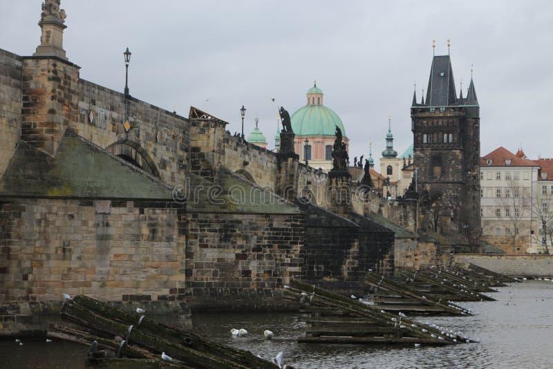 Charles Bridge in Prag stockfoto