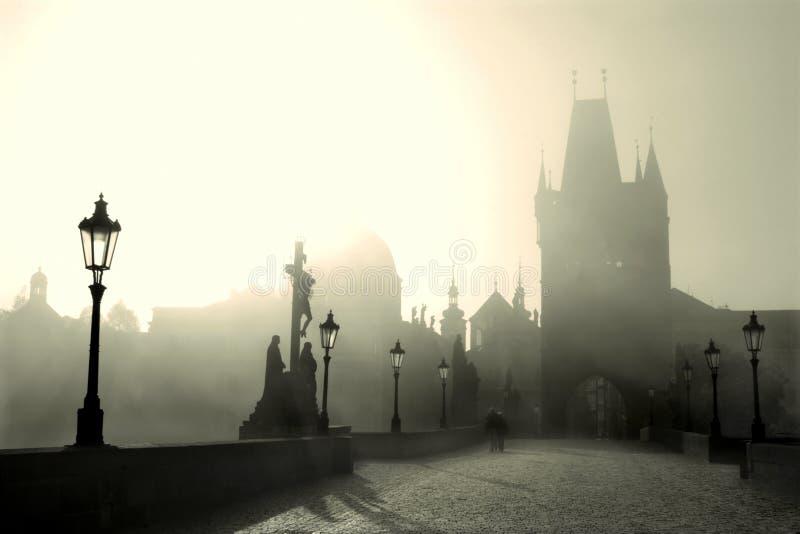 Charles bridge - prague - morning royalty free stock photo
