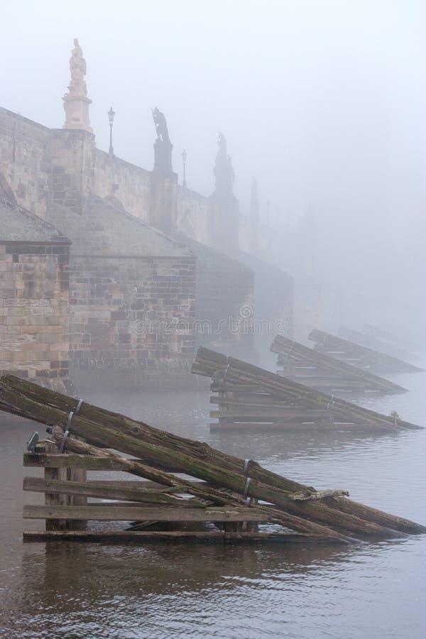 Charles-brug, Vltava-rivierdijk in de vroege ochtend, Kleinere stad, Kampa, Praag, Tsjechische republiek stock afbeeldingen
