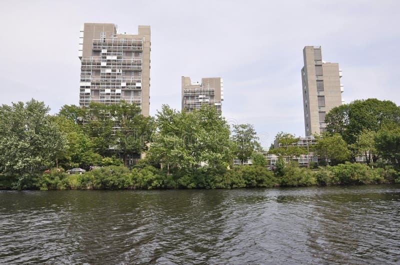 Charles brzeg rzeki od Cambridge w Massachusettes stanie usa fotografia royalty free