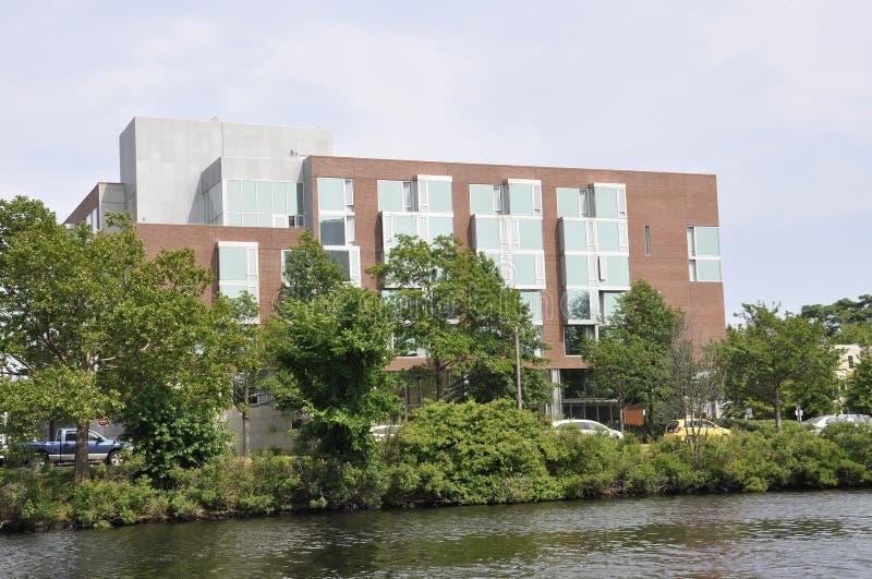 Charles brzeg rzeki od Cambridge w Massachusettes stanie usa fotografia stock