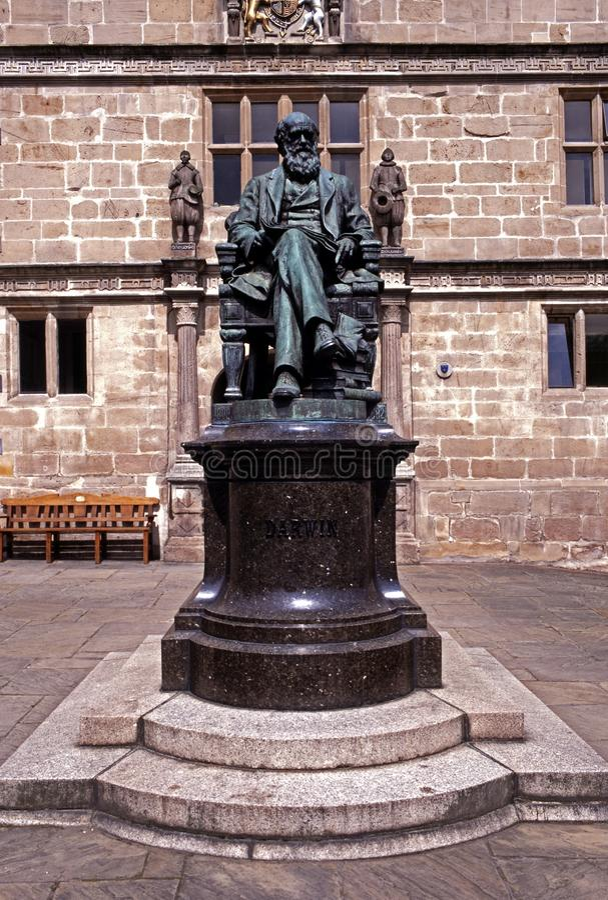 Charles Darwin雕象, Shrewsbury,英国。 图库摄影