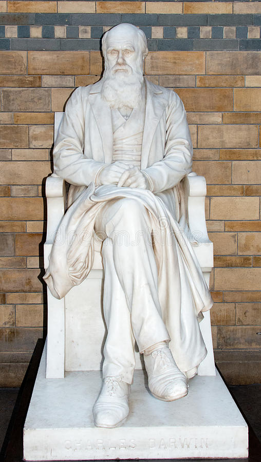 Charles Darwin雕象 库存图片