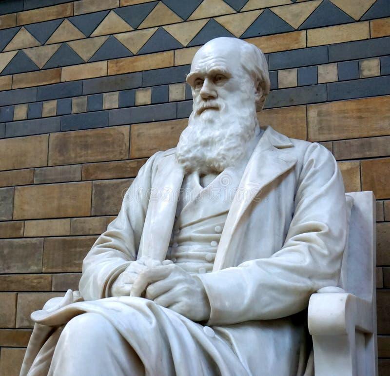 Charles Darwin雕象 免版税图库摄影