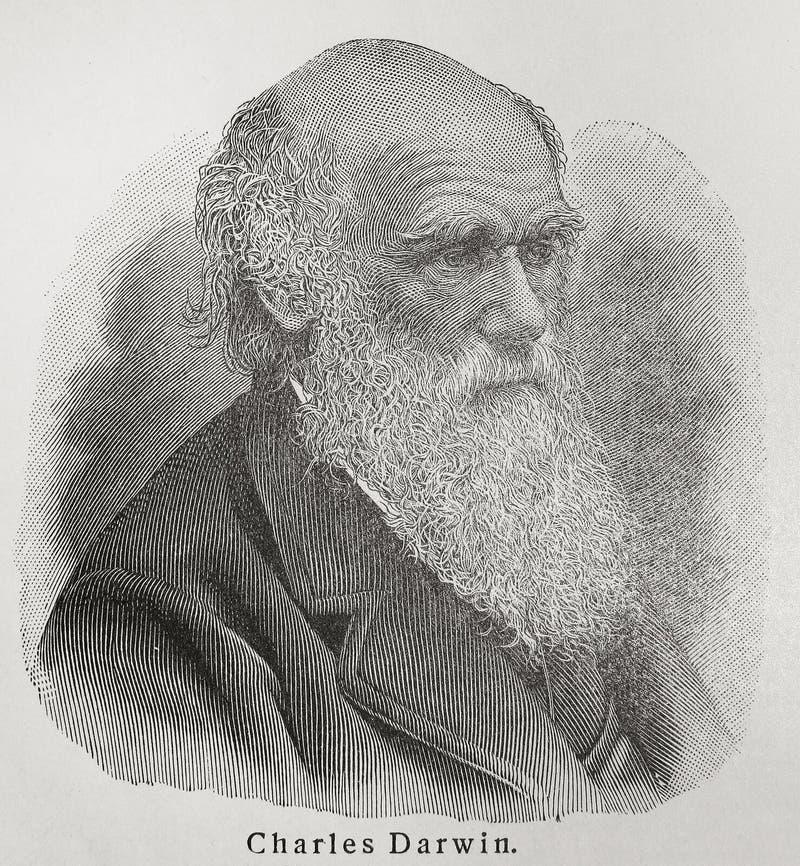 Charles Darwin fotografia stock