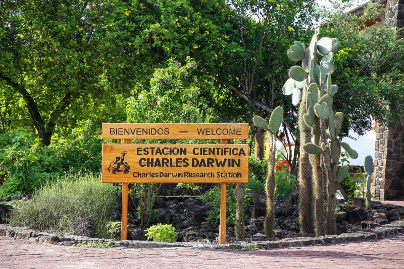 Charles Darwin Badawcza stacja na Santa Cruz wyspie w Galapago zdjęcia royalty free