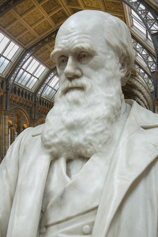 Charles Darwin - Biologiemuseum - Londen stock afbeelding