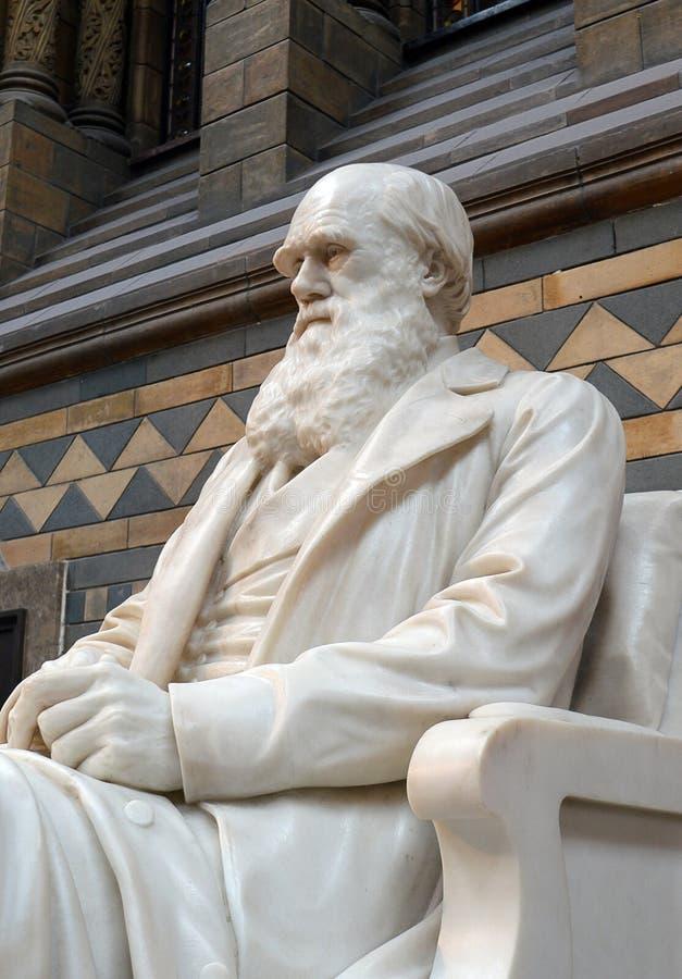 Charles Darwin-standbeeld, Biologiemuseum, Londen stock fotografie