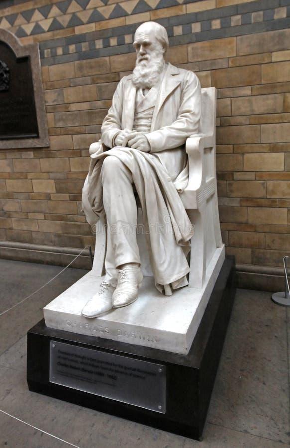 Charles Darwin-standbeeld in Biologiemuseum royalty-vrije stock afbeelding