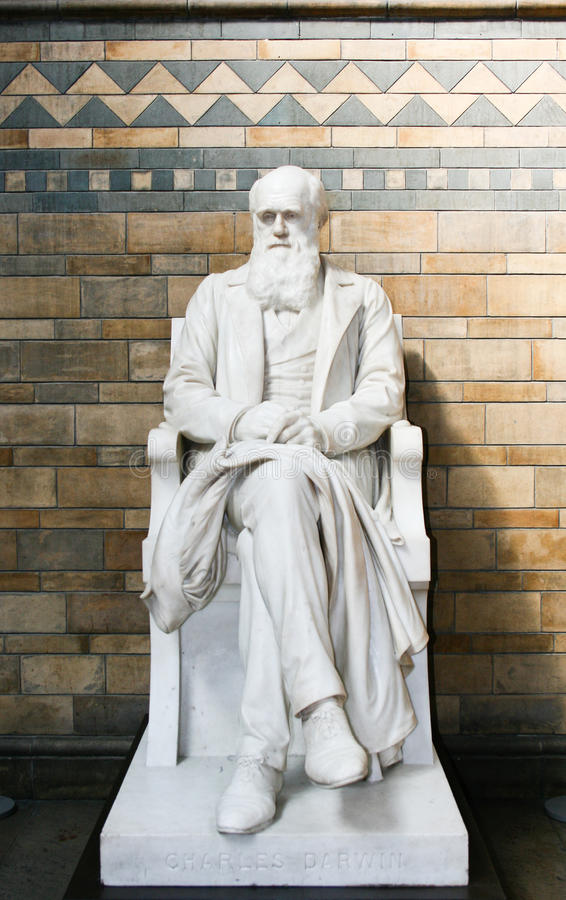 Charles Darwin Statue royalty-vrije stock afbeelding