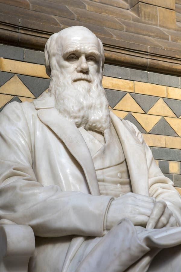 Charles Darwin Statue au musée d'histoire naturelle à Londres images stock