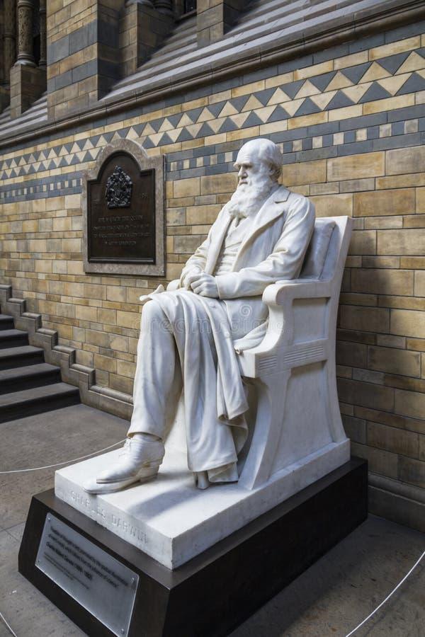 Charles Darwin Statue dans le musée de l'histoire naturelle de Londres photos stock