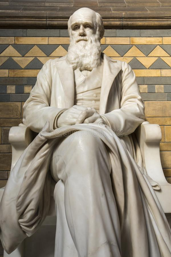 Charles Darwin Statue at the Natural History Museum in London royalty free stock photography