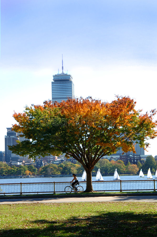 Charles River Boston. A view of Boston and the Charles river full of sailboats on a fall day. A motion blured biker on sidewalk stock photos
