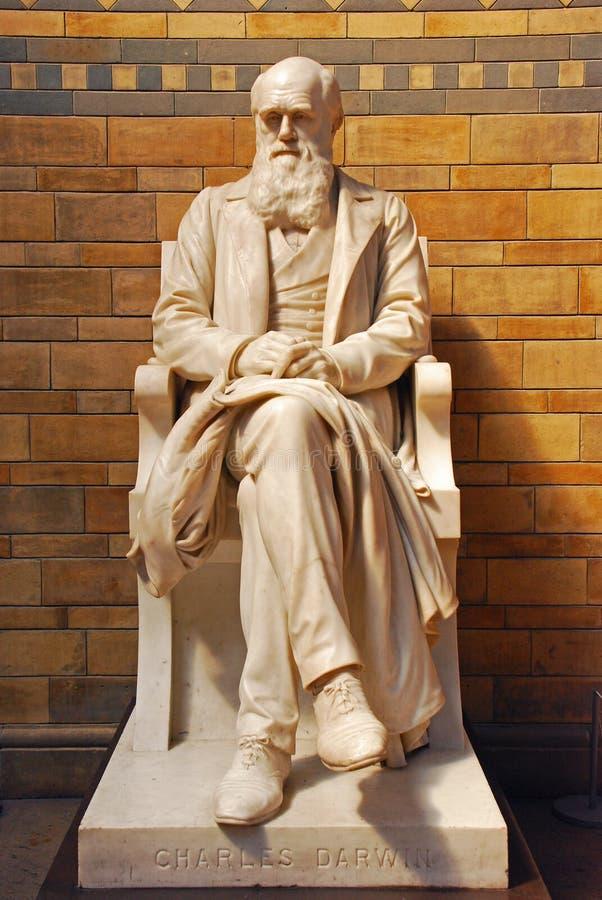 Charles Robert Darwin Statue i naturhistoriamuseet i London arkivbild
