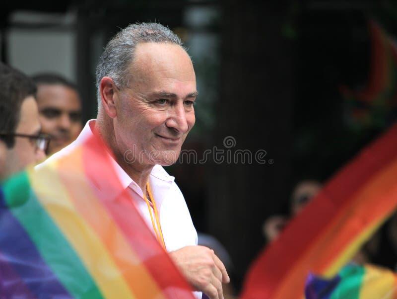 Charles Schumer in NYC LGBT Vrolijke Trots Maart 2010 royalty-vrije stock afbeeldingen
