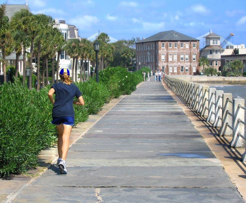 Charleston akumulatora obraz royalty free