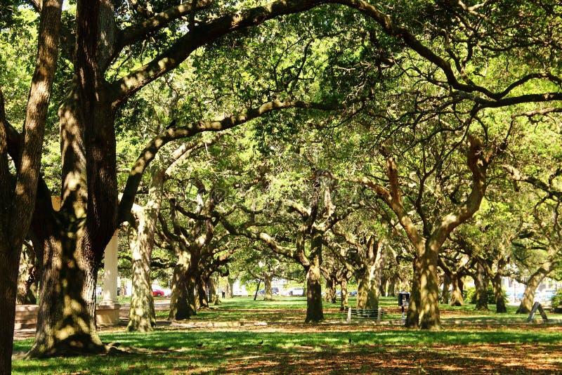 Charleston - Carolina del Sur foto de archivo libre de regalías