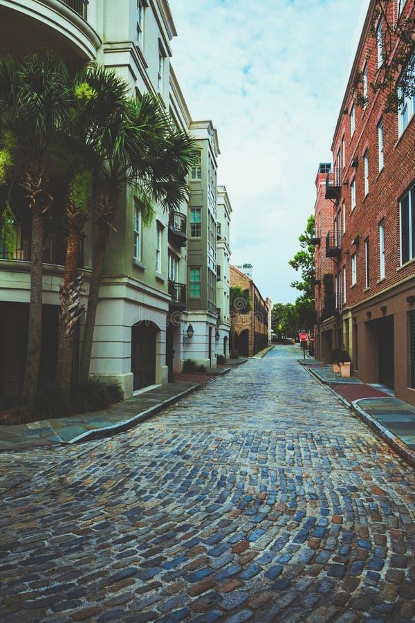 Charleston Cobblestones imagens de stock royalty free