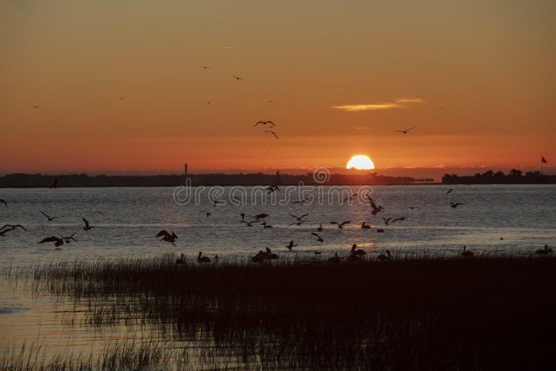 Charleston, Karolina Południowa, Stany Zjednoczone, listopad 2019 r., wschód słońca nad zatoką Charleston Harbor, patrząc w kieru zdjęcie stock