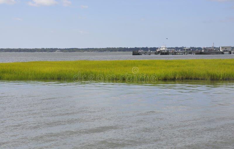 Charleston SC, Sierpień 7th: Bednarz rzeki krajobraz od Charleston w Południowa Karolina fotografia stock