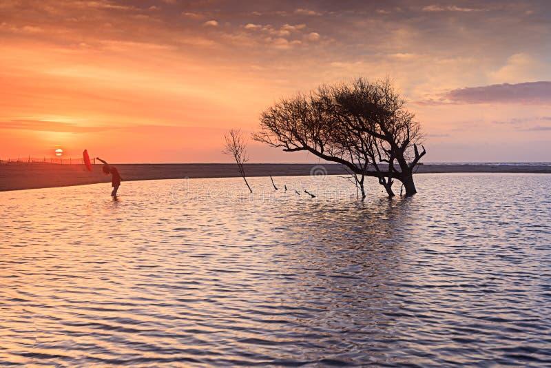 Charleston South Carolina Folly Beach soluppgång arkivbilder