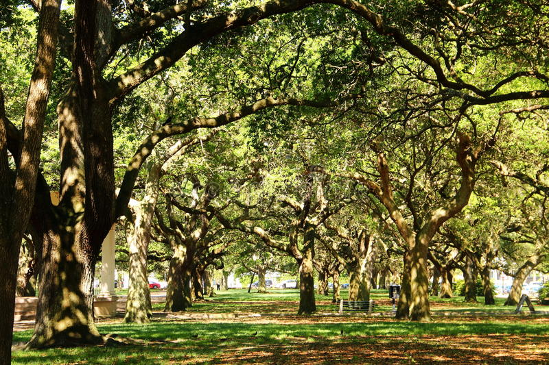 Charleston - South Carolina. Charleston is the oldest and second-largest city in the U.S. state of South Carolina, the county seat of Charleston County, and the royalty free stock photo