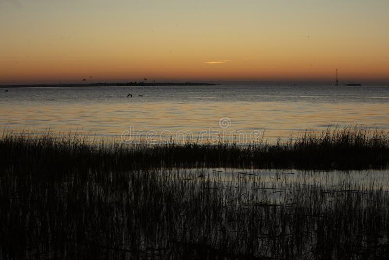 Charleston, South Carolina, Vereinigte Staaten, November 2019, der Sonnenaufgang über der Bucht von Charleston Harbour in Richtun lizenzfreies stockbild