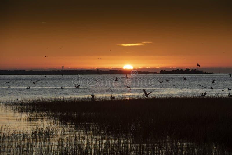 Charleston, South Carolina, Vereinigte Staaten, November 2019, der Sonnenaufgang über der Bucht von Charleston Harbour in Richtun stockbild