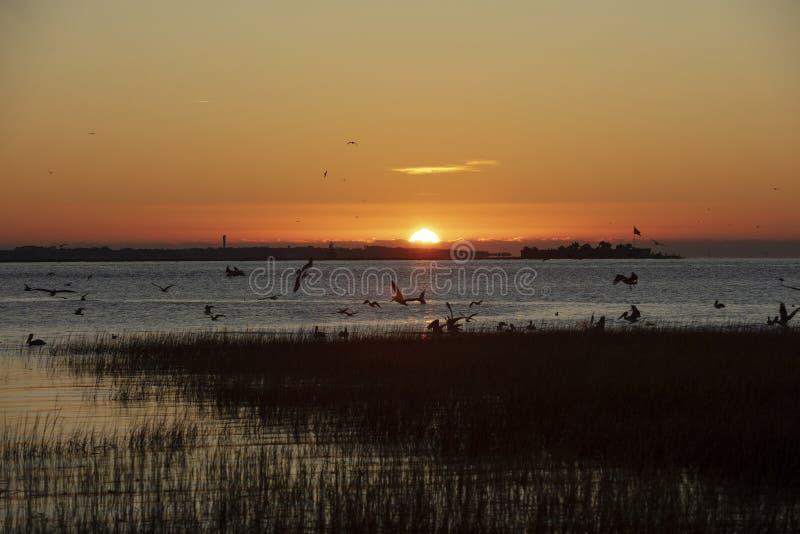 Charleston, South Carolina, Vereinigte Staaten, November 2019, der Sonnenaufgang über der Bucht von Charleston Harbour in Richtun stockfoto