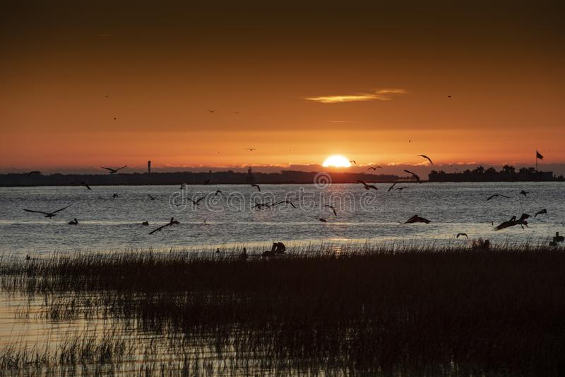 Charleston, South Carolina, Vereinigte Staaten, November 2019, der Sonnenaufgang über der Bucht von Charleston Harbour in Richtun lizenzfreie stockbilder