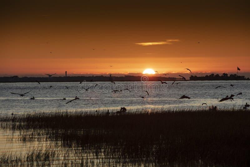 Charleston, South Carolina, Verenigde Staten, november 2019, de zonsopgang over de Charleston Harbour-baai die in de richting van royalty-vrije stock afbeeldingen