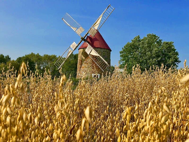 Charlevoix,在weath领域的风车 免版税图库摄影