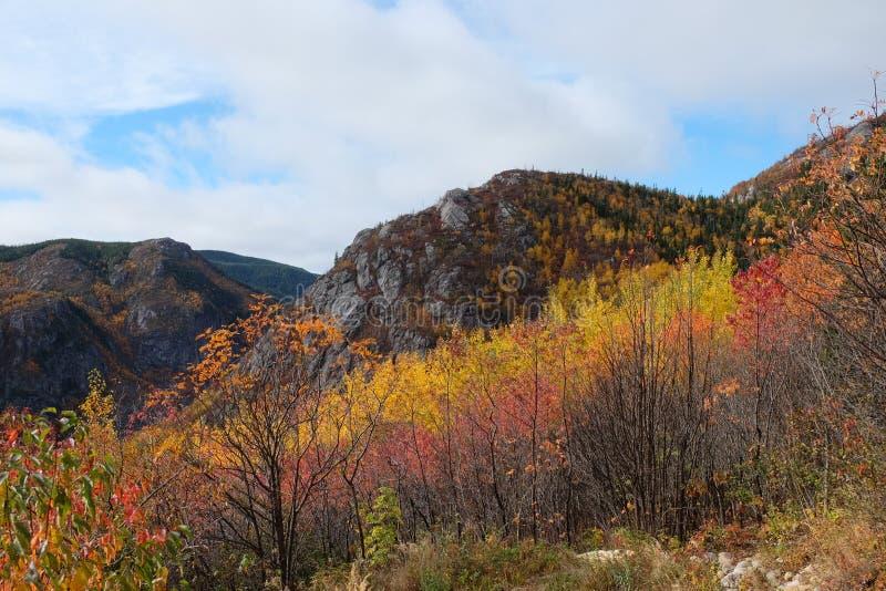 Charlevoix-Herbstlandschaft stockfotos