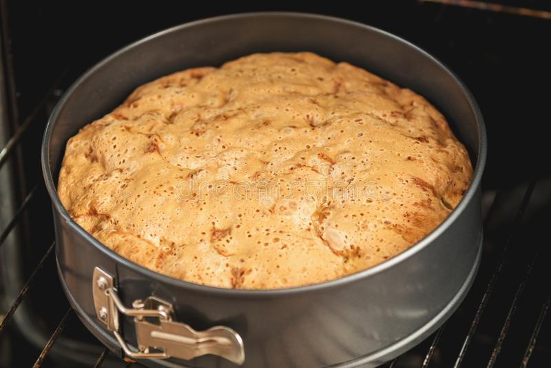 Charlotte, biscuit, pâtisserie, gâteau sous la forme dans le four images stock