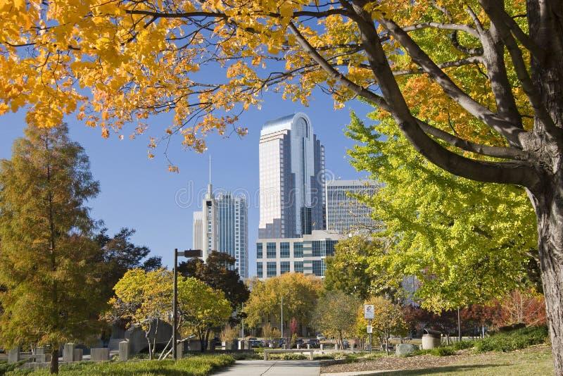 Charlotte im Herbst stockbild