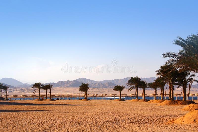 Charm ale Sheikh , Nabk bay stock photo