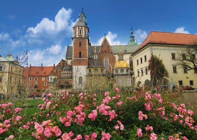 Charma Wawel i Krakow i rosblomning arkivbild