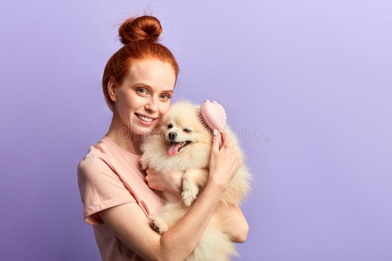 Charmant meisje met toothy glimlach die borstel gebruiken om haar aanbiddelijk huisdier te behandelen stock afbeelding