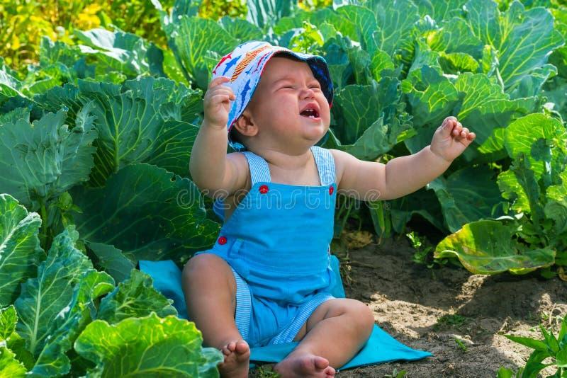 Charmante schreeuwende Kaukasische babyjongen royalty-vrije stock fotografie